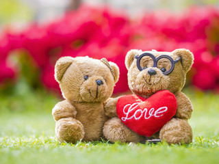 lovely teddy brown bear and red heart shape