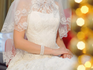 Lace Dress and Veil