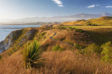 Golden sunset  over Kaikoura Peninsula Walkway, New Zealand