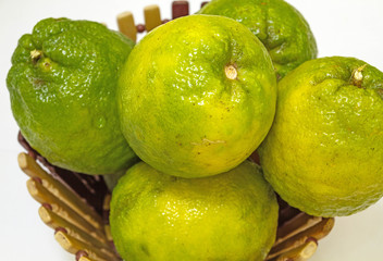 Citrus sinensis orange on basket