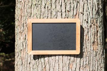 木にかけられた黒板