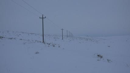 Endless Telephone Poles Carry Life