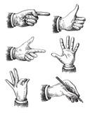 Illustration of hand - 79243483