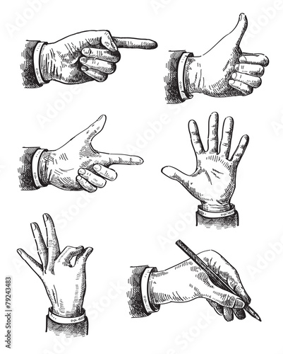 Illustration of hand - 79243483