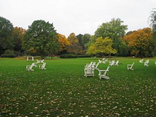 Ruhewiese im Herbst