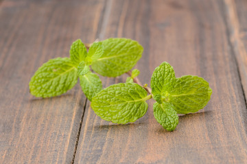 fresh mint on the wooden board