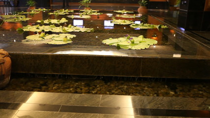 lotuses in a small waterfall in the shallow pool of hotel lobby