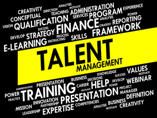 Word cloud of Talent Management related items
