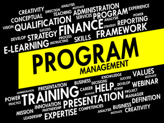 Word cloud of Program Management related items