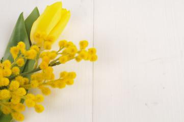Mimosa e tulipano giallo, texture