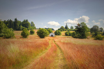 Lonely Chapel on Red Grass Field
