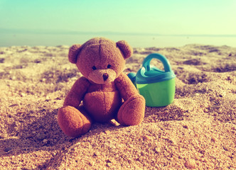 Teddy at the seaside