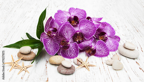 Orchids and massage stone - 79257875