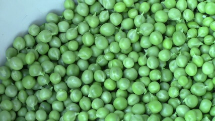manual processing peas