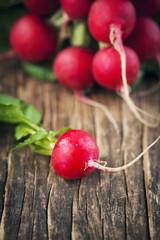 Fresh radish