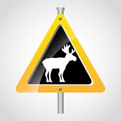 animal signal
