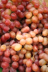 Fresh grapes on the table at the market