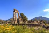 The Temple of Apollo,Delphi,Greece - 79271491