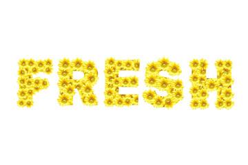 Flower symbol ,FRESH, isolate on white background