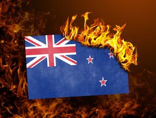 Flag burning - New Zealand