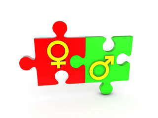 Gender puzzle