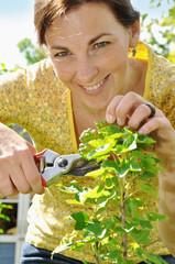 Frau bei Pflanzenpflege und Gartenarbeit
