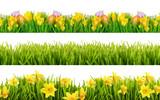 Fototapety Freisteller Frühling und Sommerblumen Wiese