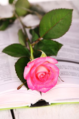 Open book with rose, closeup