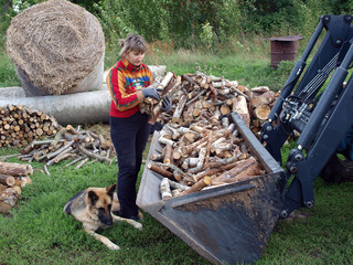 Transport firewood 3