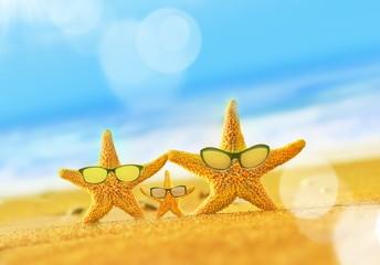 Summer beach. Starfish family on the seashore