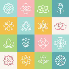 Vector ecology and organic logos