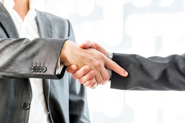Businessmen Showing Hand Shake Gesture