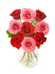 Bunch of red and pink roses in vase isolated