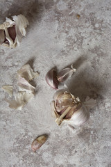 Garlic on a grunge background of soft colors