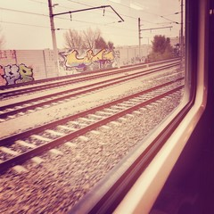 The Passenger View of Vienna