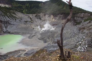 Crater of Tangkuban Perahu. Bandung in Jawa, Indonesia