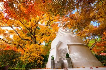 Kyoto Pagoda Autumn