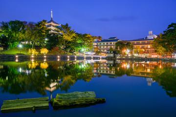Nara, Japan Skyline at the Pond