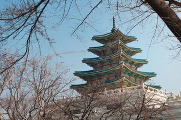 Korea National Folk Museum