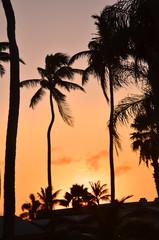Aruba by night