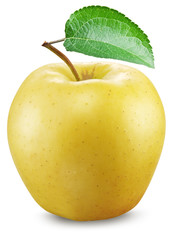 Yellow apple on a white background.