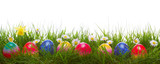 Fototapety Green grass and colorful easter eggs.
