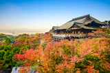 Fototapety Kiyomizu-dera Shrine in Kyoto, Japan in Autumn