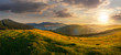 agricultural field in mountains at sunset - 79313493