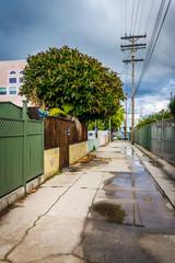 Alley in Venice Beach, Los Angeles, California.