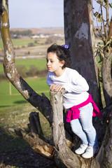 Niña en el árbol al atardecer