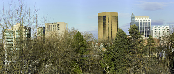 Unique view of the city of Boise Idaho skyline