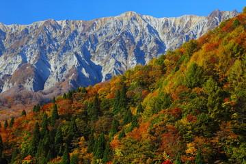 鍵掛峠からの紅葉の大山