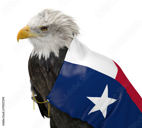 Staande foto Eagle American bald eagle wearing the Texas state flag