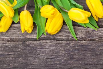 Tulpen, gelbe, Holzhintergrund